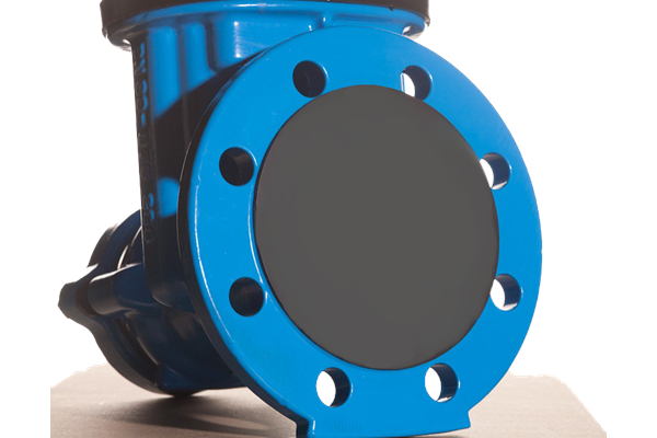 Flange_Disc_on_blue_Valve.png