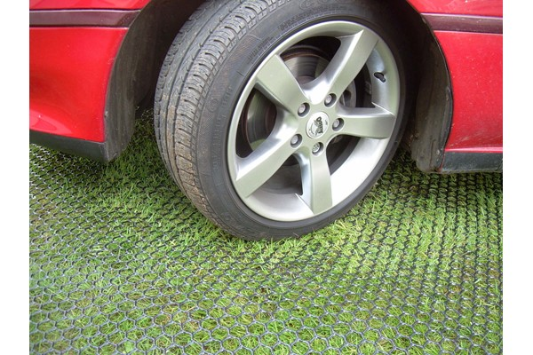 Turf Mesh 1 Car Parked.jpg